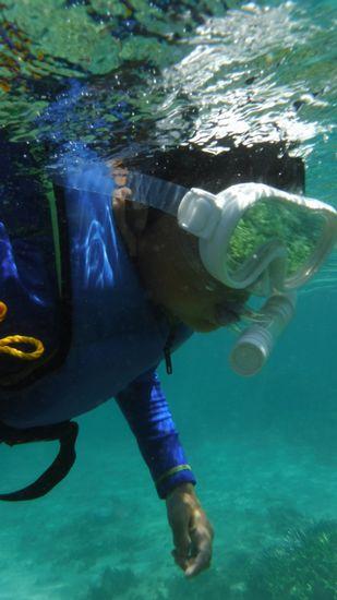 サンゴとお魚さんを楽しんでいるルカ君