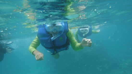 ジュンダイ君とリツシ君。すいすい泳いでいます。