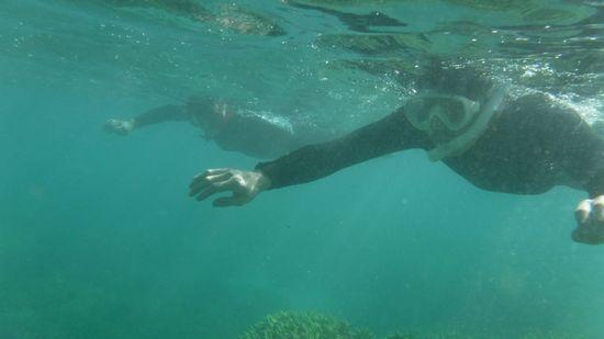 しばらくするとすいすい泳いでいます。