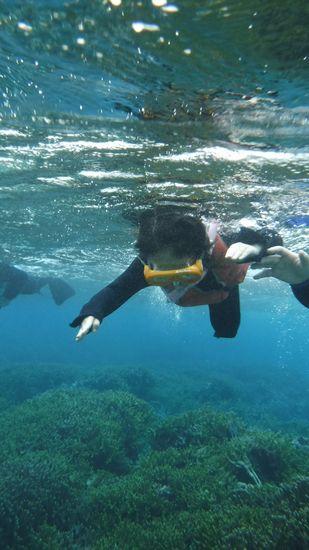 りっちゃんもなかなかの泳ぎです。