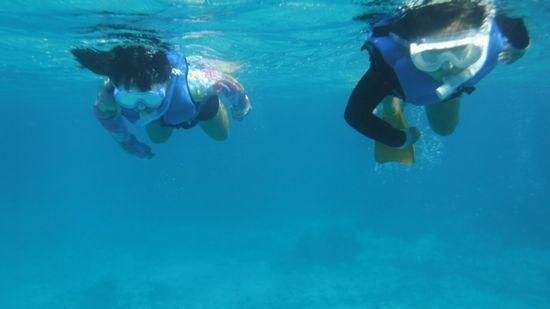 カリンチャンとオトハちゃん。余裕の泳ぎです。