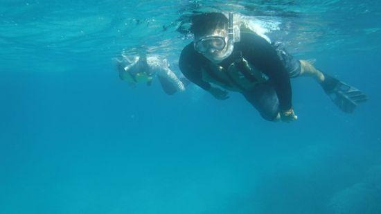 お父さん、お母さんは、余裕の泳ぎです。