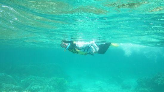 お姉さん、泳ぎとってもスマートです。