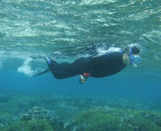 お父さんは、水中カメラで撮影部隊です