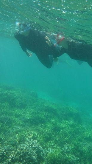 余裕の泳ぎです♪T中さんとN岡さんです。