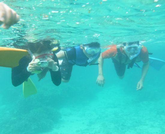 すいすい泳ぐお父さん、お母さん、アキト君です。