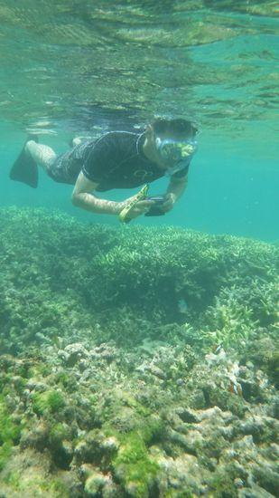 水中カメラでクマノミマンションの撮影の旦那さんです。