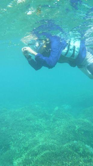 水中カメラに没頭の旦那さんです。