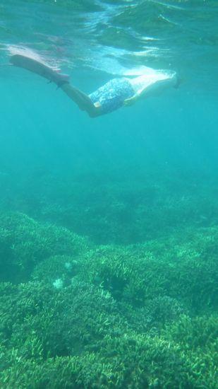 サンゴを楽しむY本さんです。
