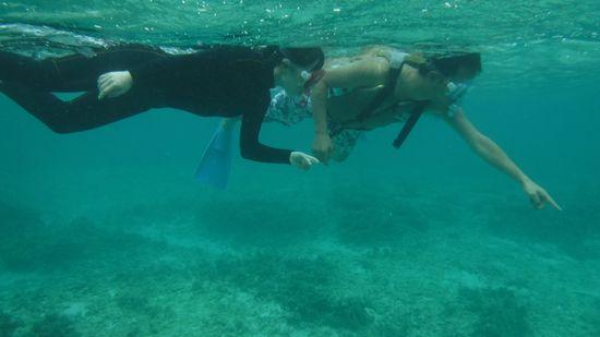 すぐにすいすい泳ぐお二人です。