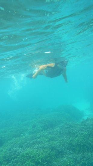 落ち着いた泳ぎのM田さんです。