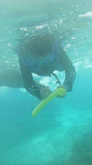 ヒマリちゃんも水中を楽しんでいます。