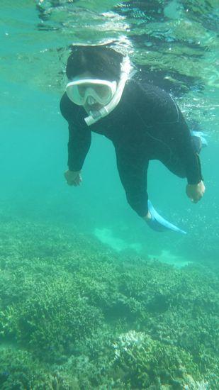 入水チェック後は、すいすい泳いでいる皆さんです。