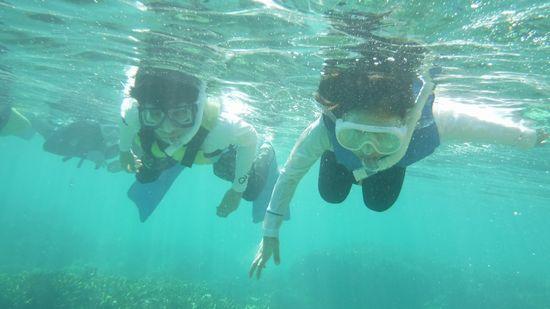 お兄ちゃんとレイちゃん、こちらも余裕の泳ぎです。