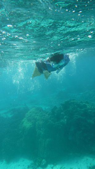 好奇心旺盛のユウト君。泳ぎ回っていましたね!