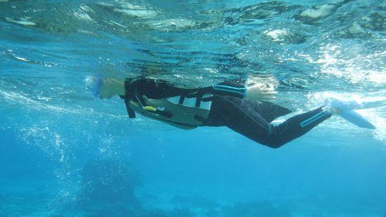 お父さんもすいすい泳いでいます