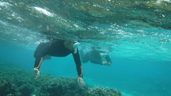 おばあちゃん、お母さん、こちらも余裕の泳ぎです。