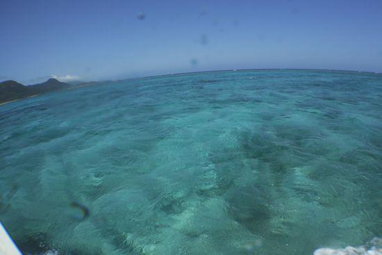 今日も海はきれいです