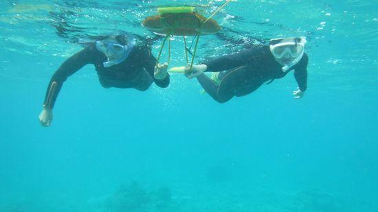 水中をしっかり楽しんでいましたね!