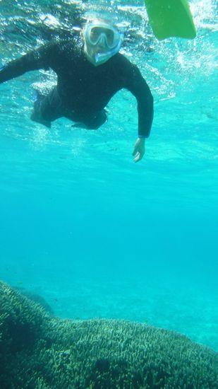 初めてのシュノーケリングといいますが、すいすい泳いでいます。