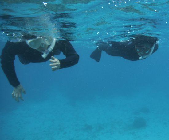 パワフルな泳ぎのお二人です