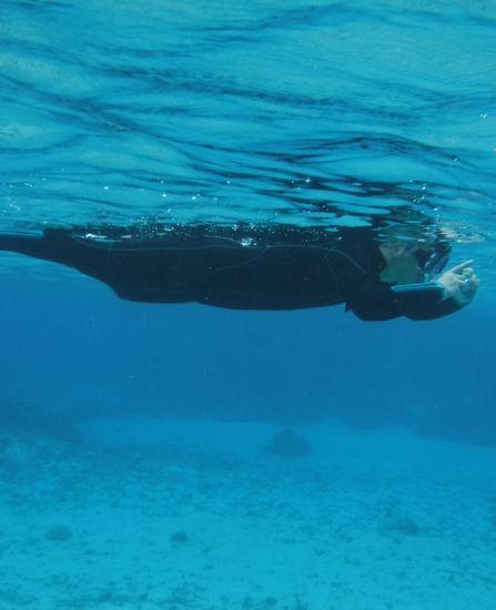 M田旦那さんは、水中カメラで撮影に没頭