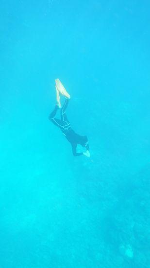 あらら!すごい深いところまで潜っています。