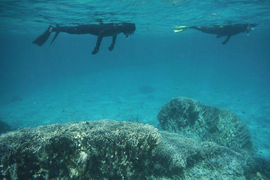 フリータイムは泳ぐというより浮いている感じです