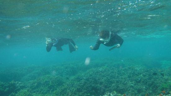 楽勝の泳ぎのお二人です。