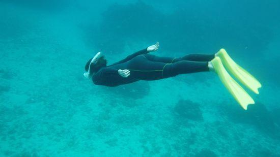 キレイなフォームですいすい泳ぎます。