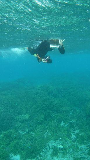 水中カメラで撮影に没頭のお母さん。