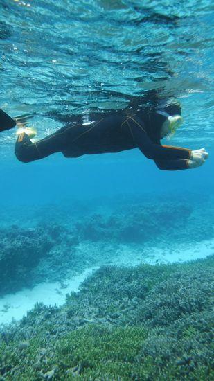 水中カメラで海を楽しむ旦那さんです。