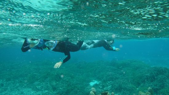 リンちゃんはお父さんと一緒に、後でお母さんも泳いでいます。