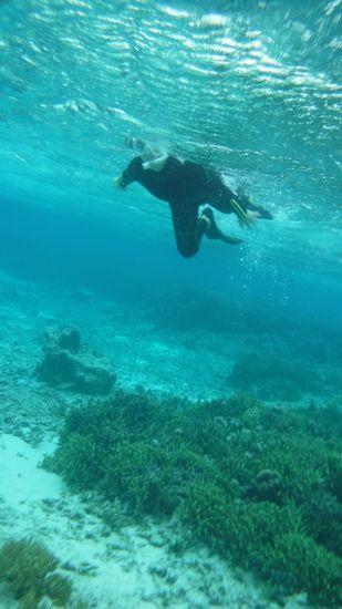 ガンガン泳ぎ回るMさんです。