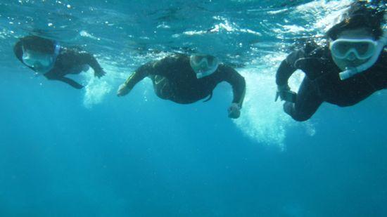 エントリーとともにすいすい泳ぎ始めていく皆さんです。