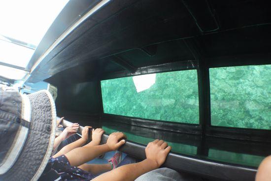 グラスボートで水中観察