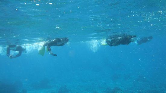 エントリーとともにすいすい泳ぎ始めていきます。