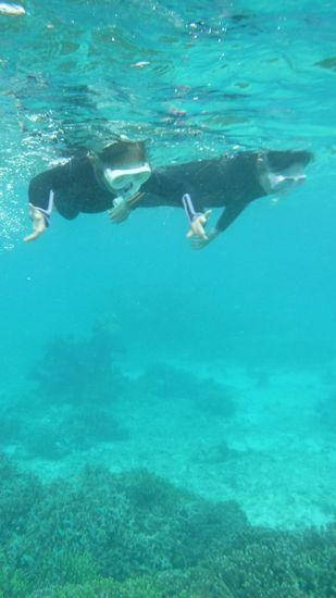 エントリーとともに、すいすい泳ぎ始めていきます。