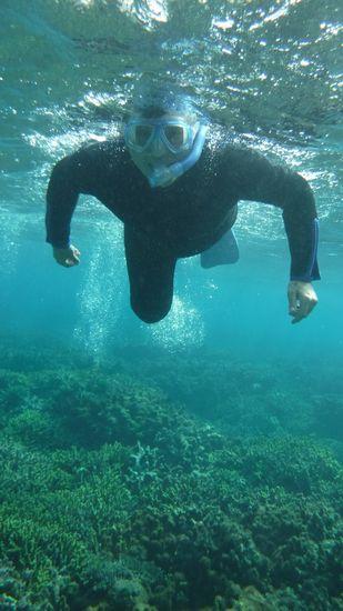 お父さん、パワフルフィンキックでぐいぐい泳ぎます
