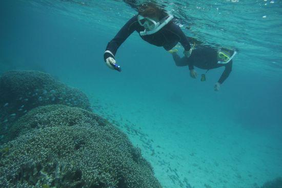 水中カメラでシュノーケル楽しんでいます