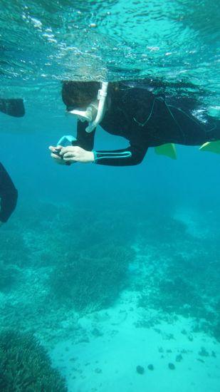 レンタルカメラで水中を激写している奥さんです。