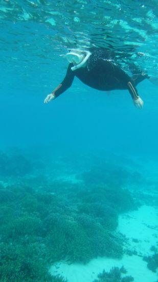 こちらも余裕んお泳ぎのN村さんです。