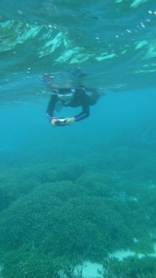 水中カメラに没頭のK野さんです。