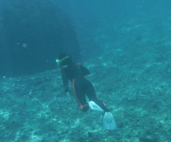透明度の高い海に素潜りドボンです