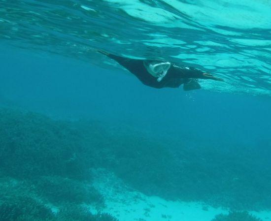 遠くまで泳いでいくT橋さんです。