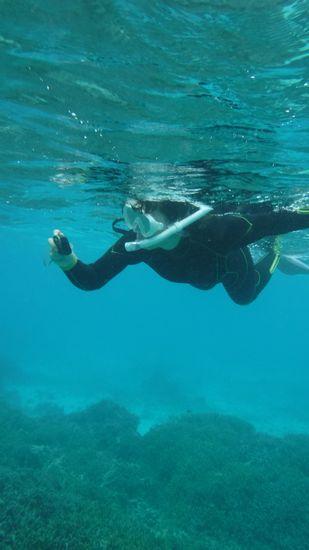 水中カメラでサンゴにお魚さんを激写です。