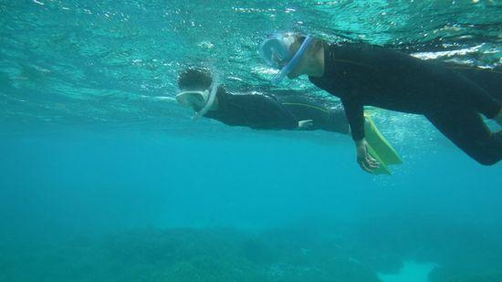 すぐにすいすい泳ぎ始めるお二人です。