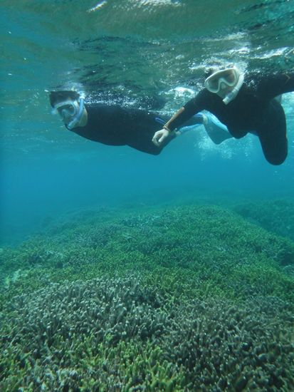 エントリーとともにすいすい泳ぎまわっています。