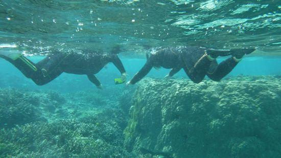 すぐにすいすい泳ぎ始めるN澤さんとK本さんです。