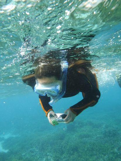 水中カメラでタイミングを狙っています